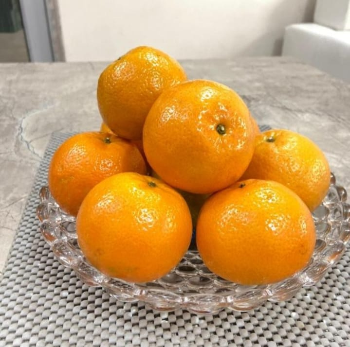 S.K. fruits