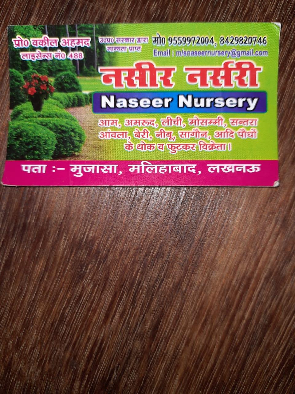 Naseer Nursery