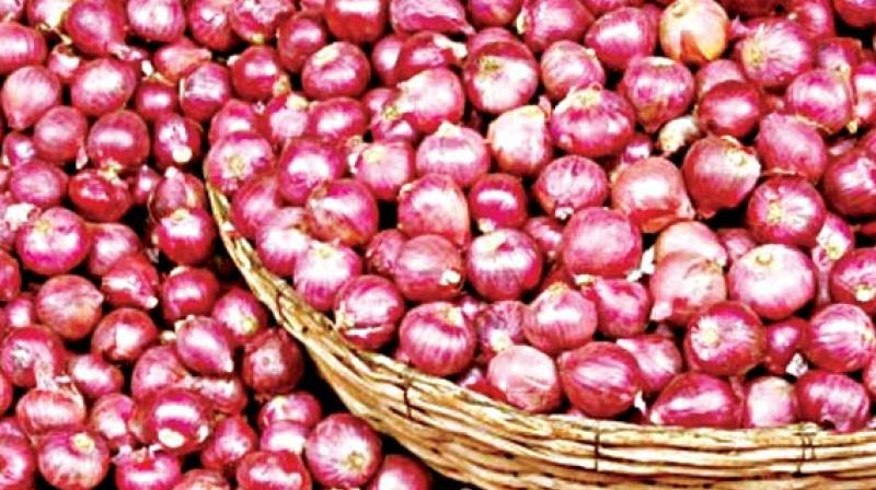 Red Small Onion