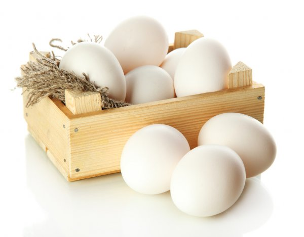 Egg Products